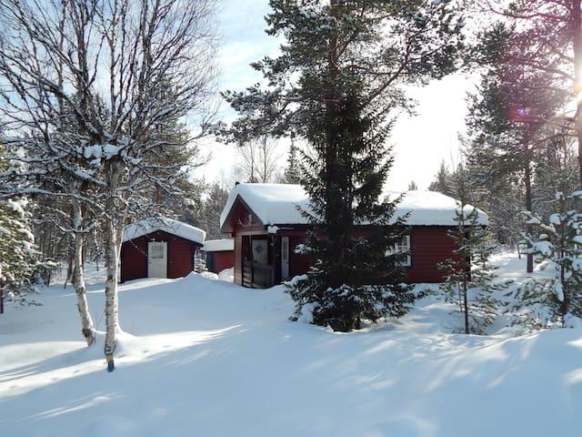 Jämtlands län的民宿