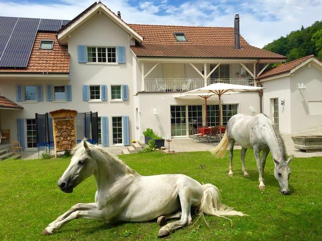 Luxury doubleroom @ Landhaus-Peters