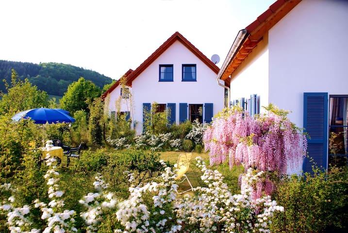 Losheim am See的民宿