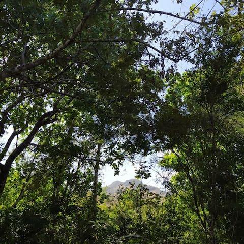 Herrera Province的民宿