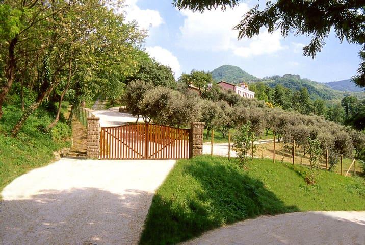 Castelnuovo的民宿