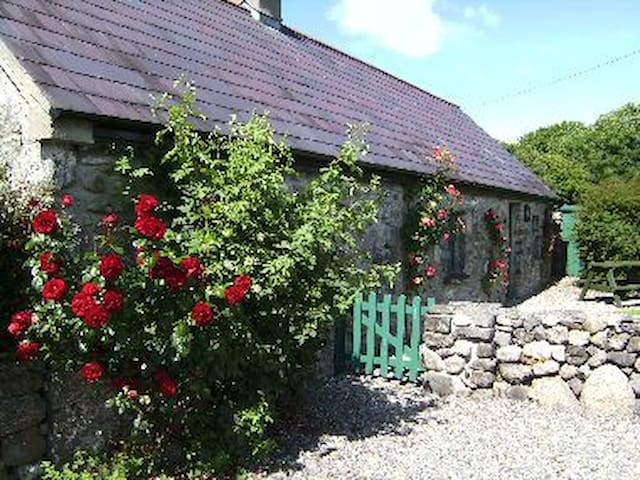 County Mayo的民宿
