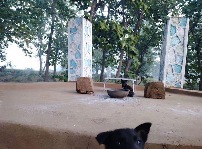 Pachmarhi的民宿