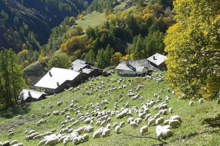 Casa di montagna ad Elva, in Valle Maira (CN).