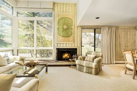 Aspen Mtn Condo. Patio & Great Views. Air Conditioning! Wood FP, Elevator, Free Parking. Ski-In/Out