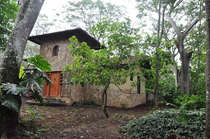 La Palmera的民宿
