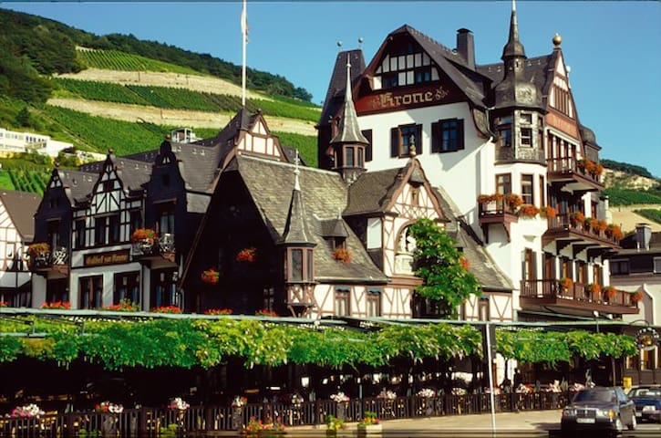 Rüdesheim am Rhein的民宿