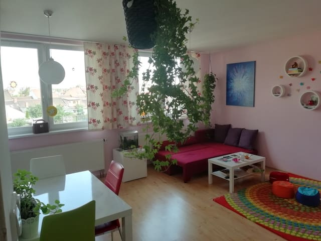 Clean and quiet flat near City-Center
