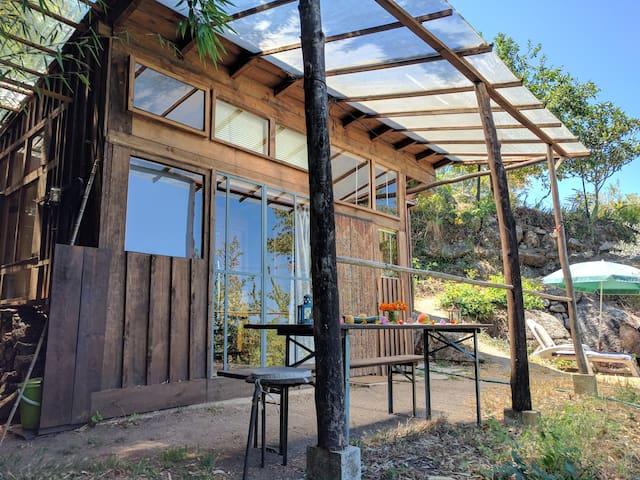 Wooden Zen House in gentle swaying bamboo