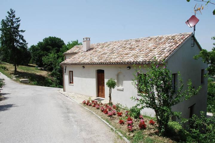 Villa del Monte的民宿