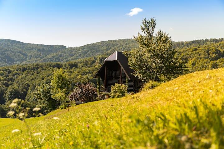Planina pri Sevnici的民宿