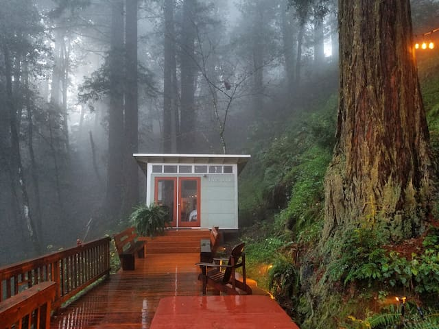 Romantic studio in the California redwoods.