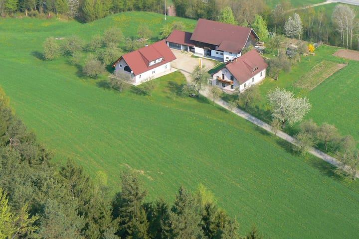 Neuhaus bei Lavamünd的民宿
