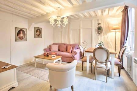 Petit Ange , charming apartment in Rouen