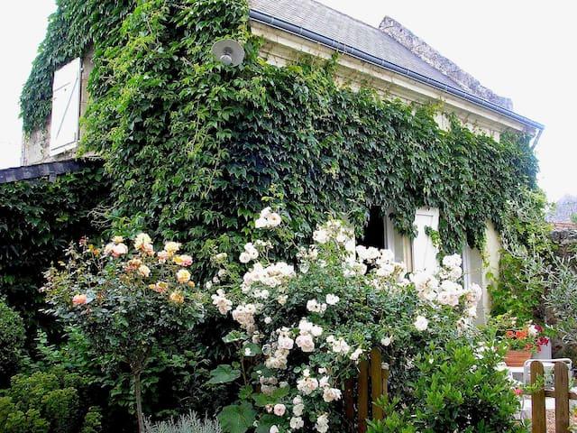 Beaumont-en-Véron的民宿
