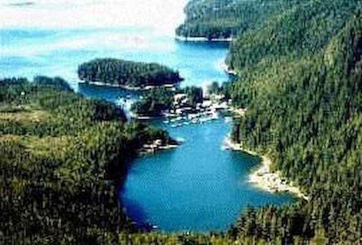 Elfin Cove的民宿