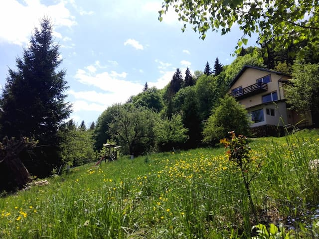 Ideal pentru izolare! The house by the forest-Bran