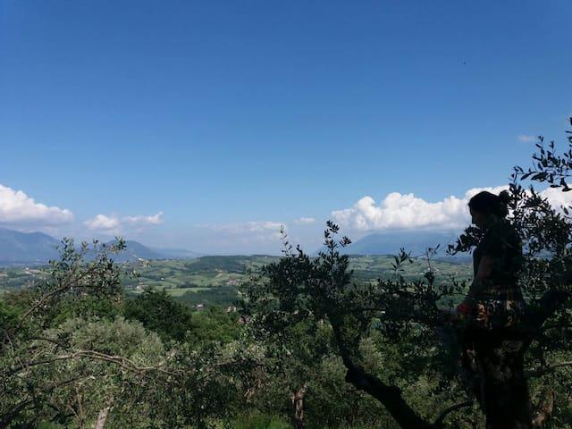 Alvignano的民宿