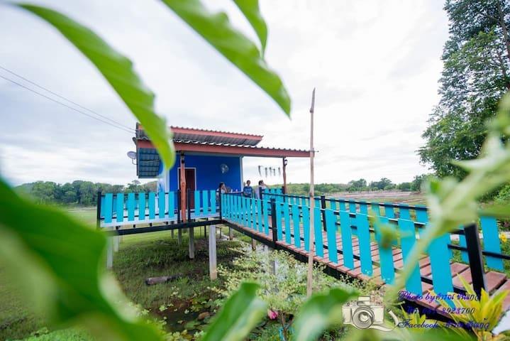 泰国的民宿