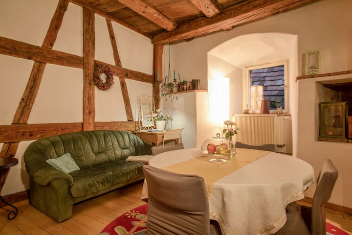 """Extraordinary Apartment """"Ferienwohnung Lemkamp"""" close to Lake Constance with Fireplace & Wi-Fi; Parking Available"""