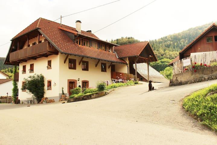 Kleines Wiesental的民宿