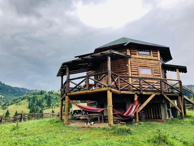 Prisaca Dornei的民宿