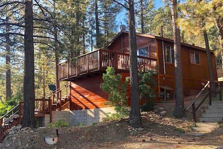 Cozy Cabin in the Woods