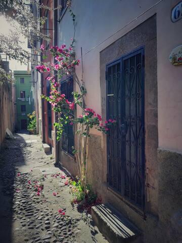 Wonderful relaxing home in Bosa IUN  P3631