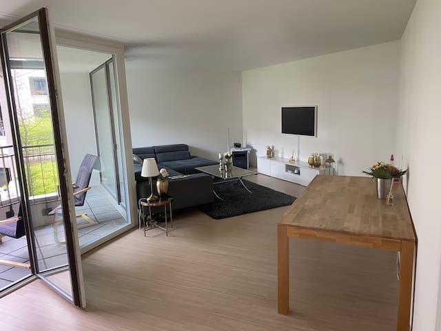 Zürich Apartment   82 m2