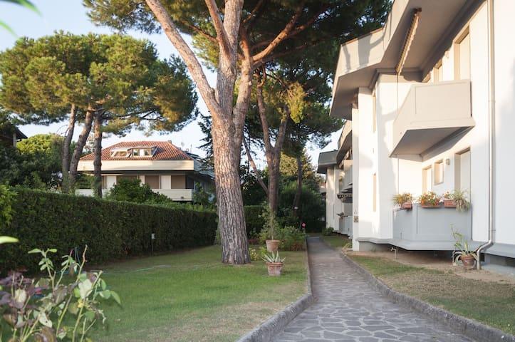 马萨(Massa)的民宿