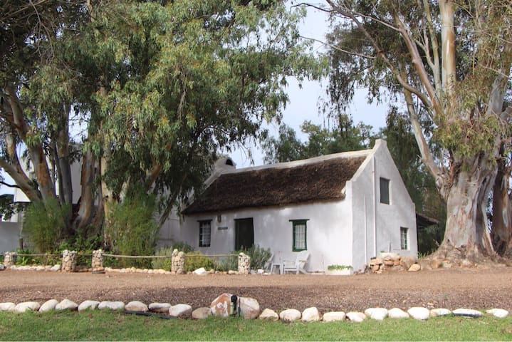 Pepper Tree - heritage cottage
