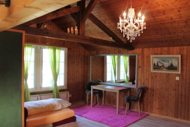 Penthouse in Interlaken, centrally located.