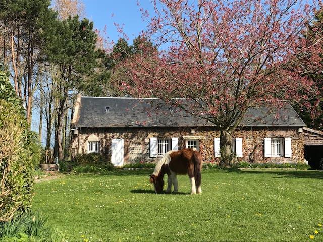 Saint-Jouin-Bruneval的民宿