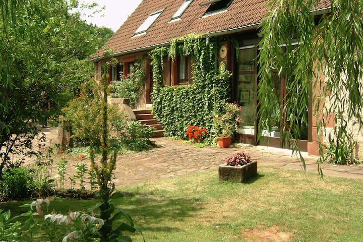 Wimmenau的民宿