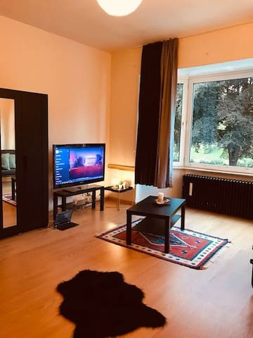 The Best flat at Liège with free Netflix! :-O
