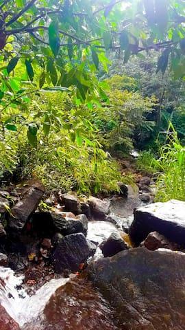 Sri Palabaddala的民宿