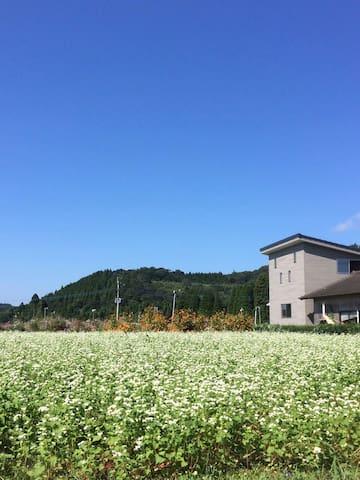 薩摩郡, 鹿児島県, JP的民宿