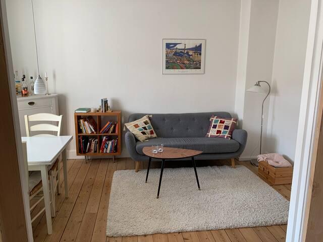Big apartment in nice neighborhood