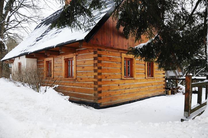 Bartošovice v Orlických horách的民宿