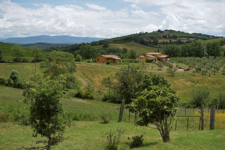 Campagnatico的民宿
