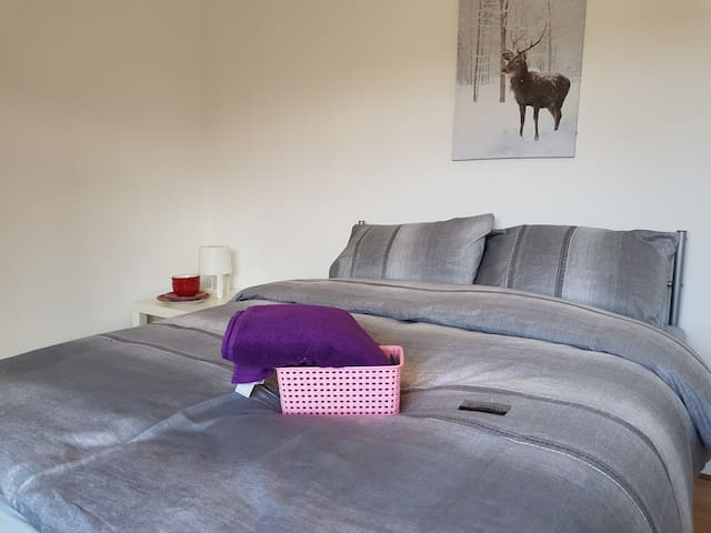 Large Double room ( C) HOXTON/ OLD STREET N1