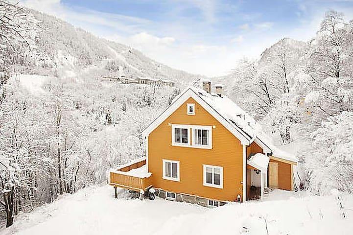 Lipton Lodge Rjukan (Room 1+1)