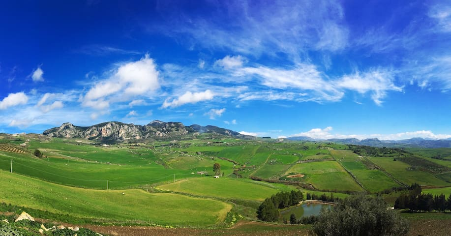 Sambuca di Sicilia的民宿