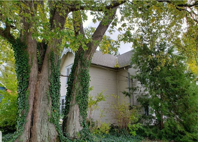 The 1888 House