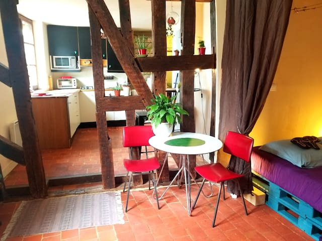 Cosy Apartment by the Marais de Bourges
