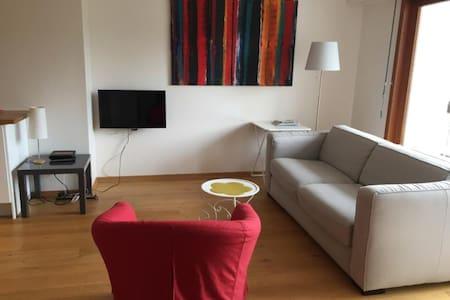 ANNECY Agréable appartement de 50 m² à 2 pas du lac et des commerces.