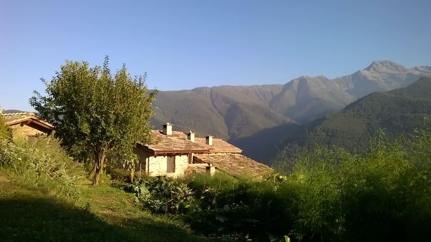 Villar Pellice的民宿