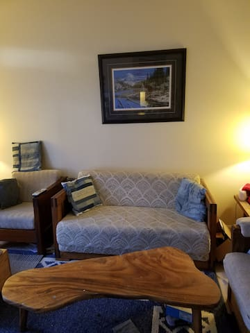 Shared living space near Dulles Airport