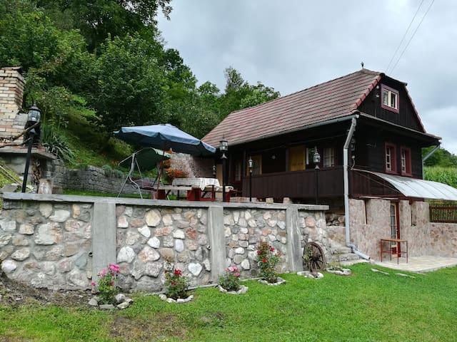Ocoliș的民宿