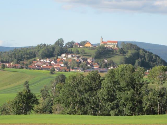 Jandelsbrunn的民宿